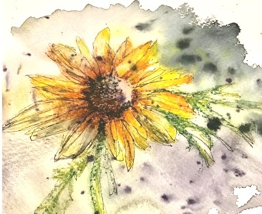 PM Series Exploring Watercolours & more'  with Margaret Jarvis  (£15 deposit)
